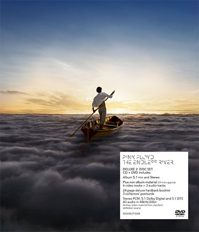 THE ENDLESS RIVER (CD + DVD)
