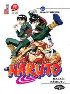 Naruto 10 - Sjajni nindža