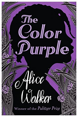 a diary of a girl in the color purple by alice walker