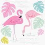 Čestitka, Flamingo