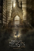 Fantastic Beasts & Where To Find Them, dvd