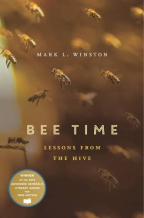 bee time lessons from the hive