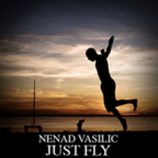 JUST FLY, CD