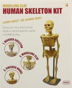 MODEL CLAY KIT HUMAN SKELETON