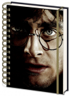 agenda harry potter - 3d harryvoldemort