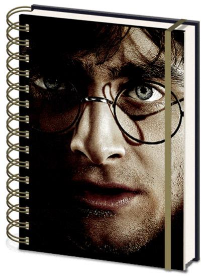Agenda Harry Potter - 3D Harry/Voldemort