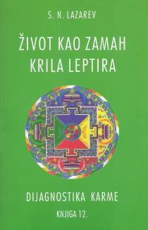 DIJAGNOSTIKA KARME: ŽIVOT KAO ZAMAH KRILA LEPTIRA - KNJIGA 12