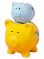 Kasica - Double Pig, Sensible Savings