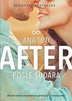 After 2: Posle sudara
