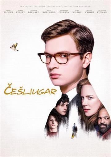 DVD ČEŠLJUGAR (THE GOLDFINCH)