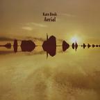 Aerial (Vinyl)