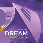 Flying In The Dream