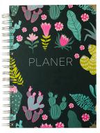 Nedatumiran planer - Kaktusi