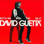 Nothing But The Beat (2 x Vinyl)