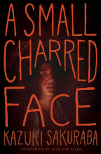 A Small Charred Face: Volume 1