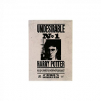 Magnet - HP, Undesirable No1